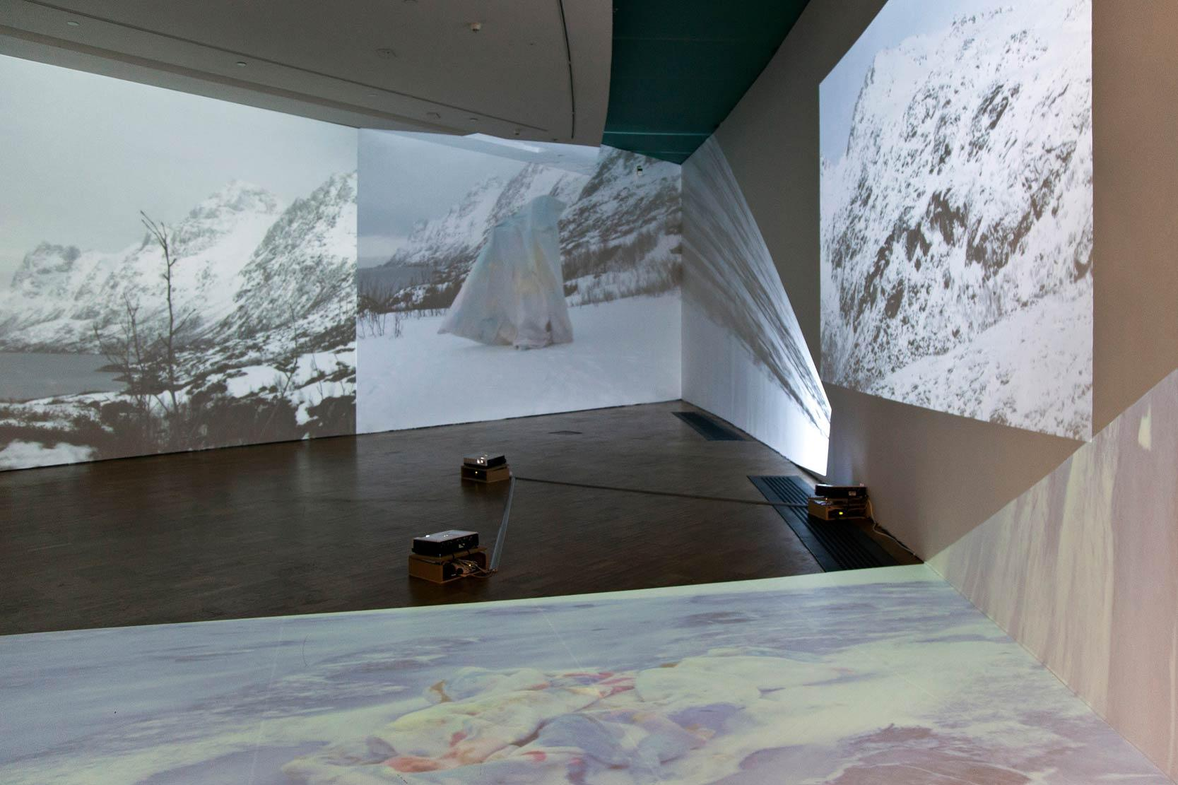 Blue Lagoon exhibition view/ Traveling with a Painting. 2014 Video Installation. Photo by Anu Vahtra