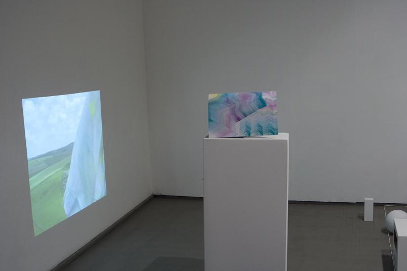 Installation view, Vartai gallery, Vilnius, Lithuania, 2012